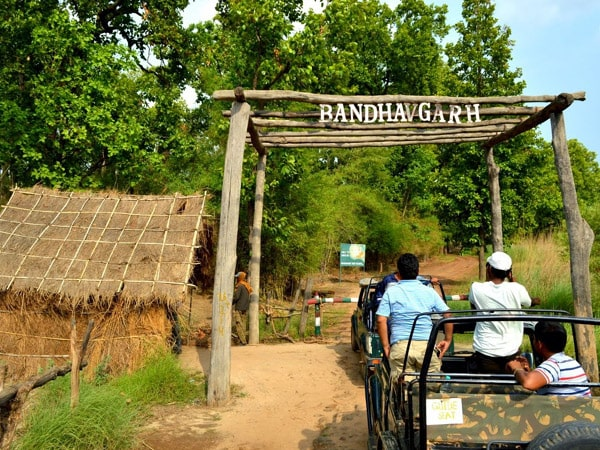 Bandhavgarh National Park Tour Packages