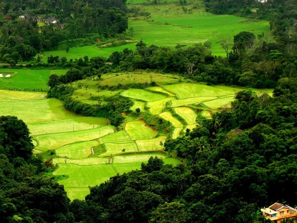 coorg hill station tours